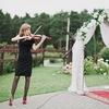 Скрипачка Lisa ( Лиса ) 🐺/🎻 Скрипка Челябинск
