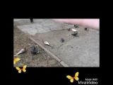 Когда на улице весело)))