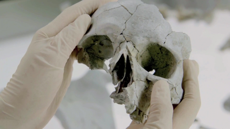 Кости Bones 12 сезон Промо Believing In Fate HD смотреть онлайн без регистрации