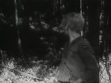 «Сын полка»  (1946) - военный, детский, реж. Василий Пронин