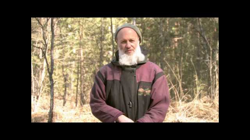 Владимир Антонов - Лайя йога