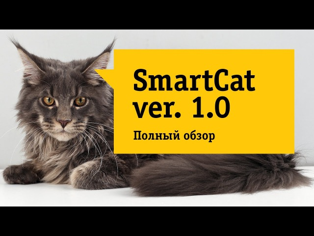 Обзор на кота. Лучшее портативное многофункциональное устройство для дома.Супер кот