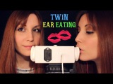 ASMR ☾ Intense Twin Ear Eating ~ Tongue Shaking, Licking, Cupping & Mouth Sounds ~ No talking