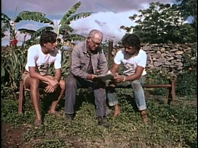 66- Жак Кусто-Культурное наследие острова пасхи 66- ;fr recnj-rekmnehyjt yfcktlbt jcnhjdf gfc[b