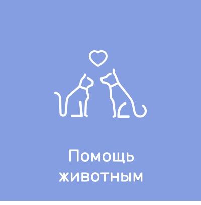 Фонды и организации: Помощь животным