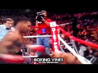 Mike Tyson|Surprise motherfucker| By ShotShock