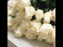 собираем 75 белых Голландских роз