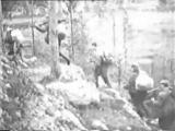 Георгий Абрамов Шумел сурово Брянский лес