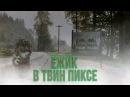 ЕЖИК В ТВИН ПИКСЕ I SUPER VHS МЭШАП