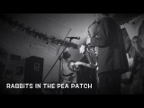 Rabbits In The Pea Patch (Maceo Parker) by The Funkaholics. FAQ Cafe 22.12.2016
