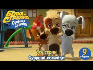 Озорная семейка - Белка и Стрелка - Все серии подряд (сборник 9) Поучительный муль ...