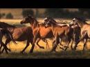 Tuva Groove by Kongar ool Ondar