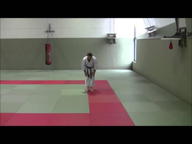 Fukyugata Ichi and Ni - Ryukyu Shorin Ryu Karate Do Tesshinkan