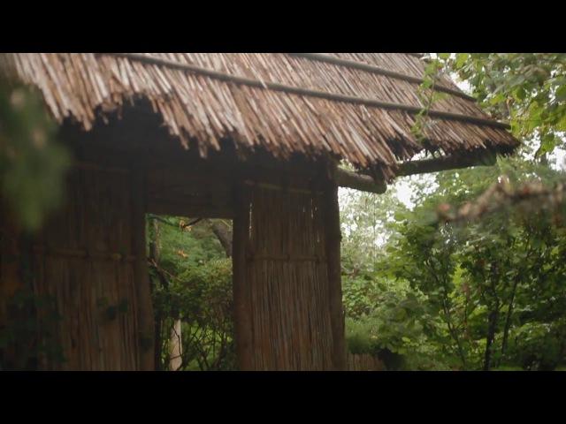 Гинкго Парк. Первый частный ботанический сад от проекта Парки Толоконникова. г. Новочеркасск