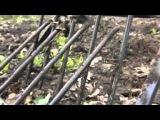 Садово-огородный рыхлитель