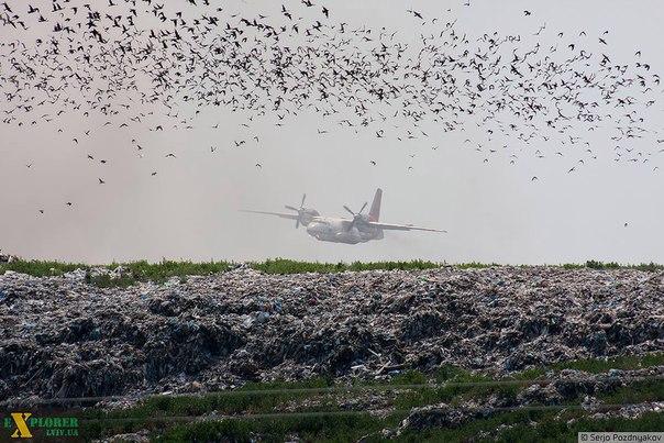 Турция готова направить в Украину самолет для тушения пожара на свалке подо Львовом, - Порошенко - Цензор.НЕТ 2287