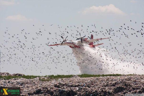 Турция готова направить в Украину самолет для тушения пожара на свалке подо Львовом, - Порошенко - Цензор.НЕТ 9198