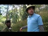 Встреча с гориллой. 5 серия 2 сезон Идиот за границей