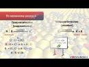 Видеоурок по химии Типы химических реакций в органической химии