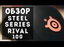 SteelSeries Rival 100 - Обзор мышки от Слэша