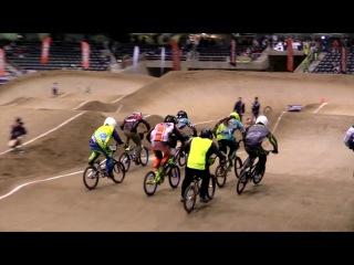 BMX Race : Zula / Cato / Killian
