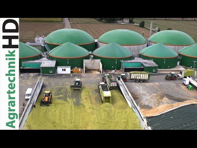 Claas Jaguar 980 | Fendt 724 - 939 | Biogas Plant | Traktoren häckseln Mais | AgrartechnikHD