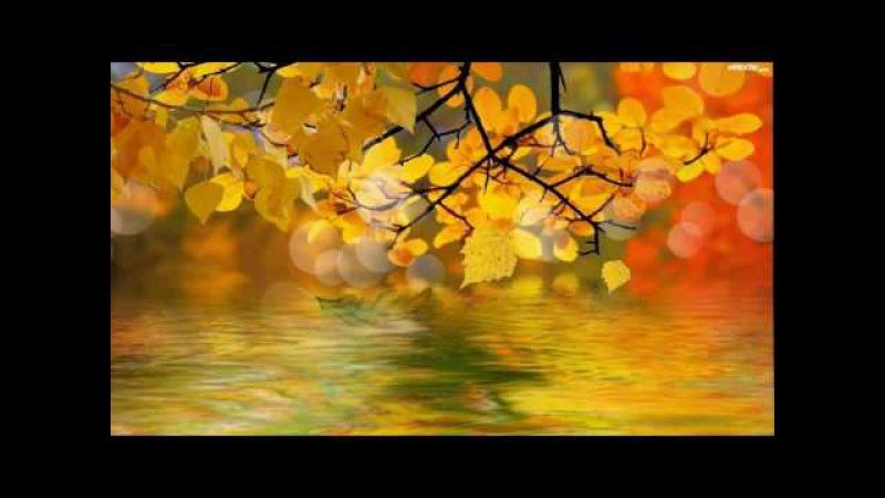 Осенний футаж