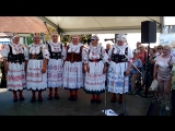 Чешская Народная музыка-группа