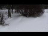 БРОДЯГА из альбома Белая береза