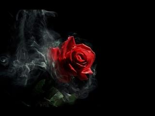 Ruslana - Rose (из аниме Нана / Nana) на русском AniPlay.TV