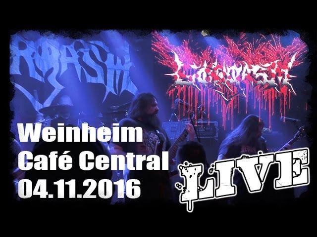 Gorgasm LIVE @ Macho Slam Warmup - Weinheim Cafè Central 04.11.2016 - Dani Zed
