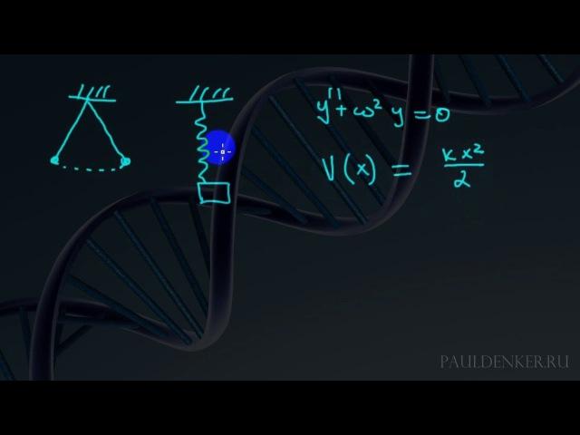 Квантовая теория поля | мой маленький обзорчик целиком