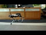 Boston Dynamics представили нового робота SpotMini. Похож на домашнего динозавра.