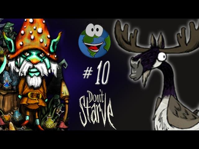 Прохождение Don't Starve с модом The Korrigan 10 - Пернатый Коалослон и Гусь Лось