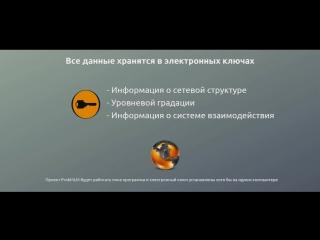 Проект ProkMLM заработок в интернете ПРОЕКТ БОМБА