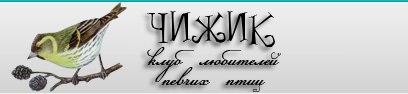 Сайты и Форумы друзья Ik_Y2QtkKks