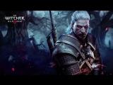 The Witcher 3 + AMD Phenom x4 B55 4/3.5Ghz+GTX 670 2gb 256 bit