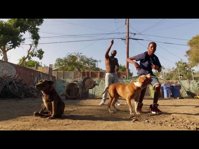 Desto Dubb - Born to Sale Juice OFFICIAL MUSIC VIDEO