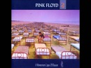 PINK FLOYD - Learning To Fly