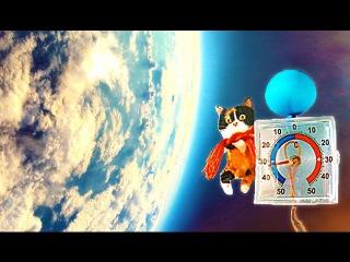 Продолжение приключений Куки в космосе 😊