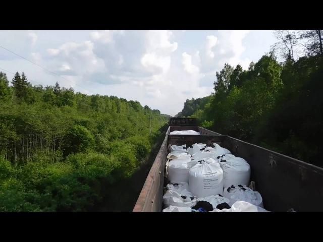 СПб Дно Псков СПб на грузовых поездах трейнхоп trainhop
