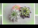 Цветы из атласных лент, канзаши. Лепесток Ромбик/ МК/Своими руками/ DIY/new petals/kanzashi/