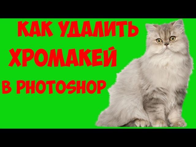 Как удалить хромакей в Photoshop CS6