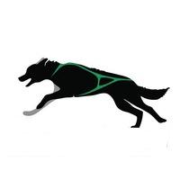 Логотип Деревня ездовых собак Серебро Севера