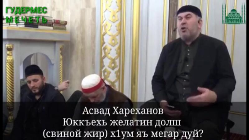 Асвад Хариханов - Юкъахь желатин (свиной жир) йолуш х1ума йаа мегар дуй?