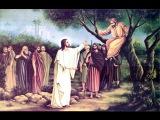 [29/01/17] Неділя про Закхея