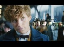 Newt Scamander | If you worry, you suffer twice