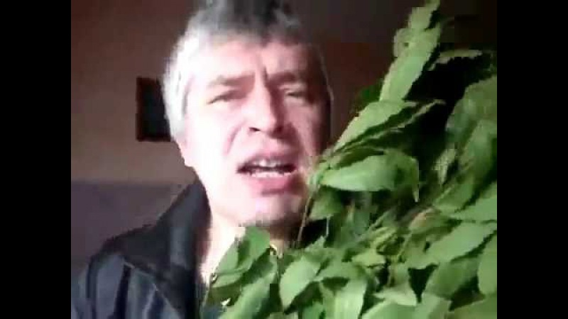 Дедовидео Веник баня и 2 ствола под музыку Truth And Ruggedness Russian oldster