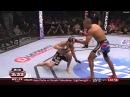 fight ending leg kicks