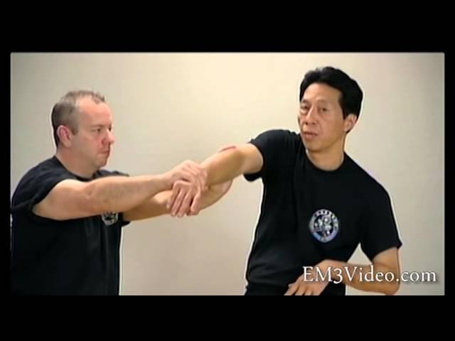 Wing Chun Vol 3 BIU GEE by Samuel Kwok